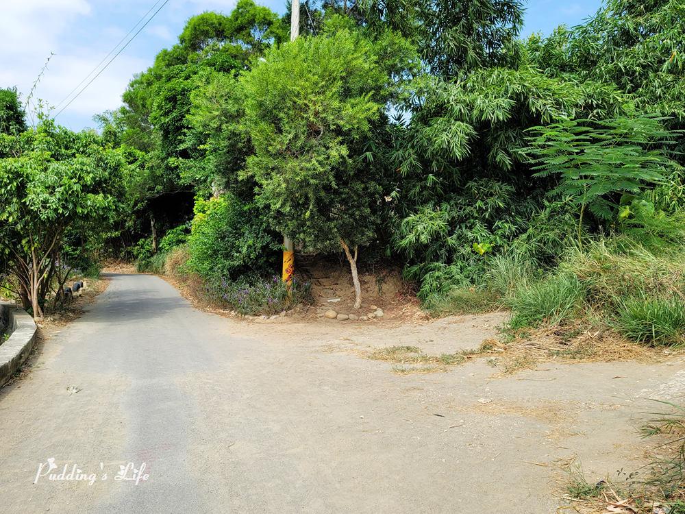 知高圳步道-叉路