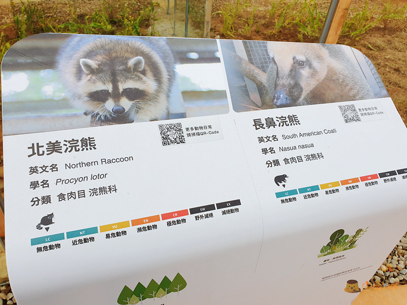 新竹動物園041