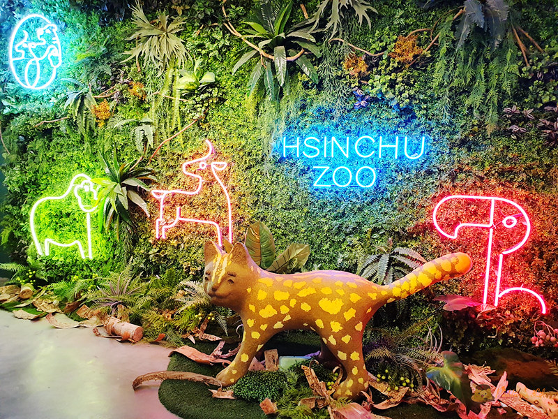 新竹動物園048