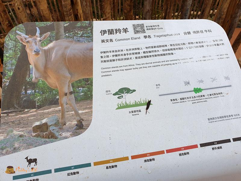 新竹動物園0010