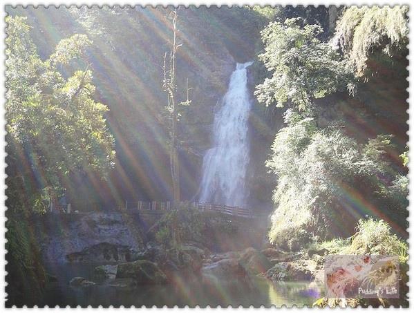 【遊記-南投】竹山鎮閃耀著彩虹光芒的生態渡假園區《杉林溪森林遊樂區》松瀧岩瀑布-天地眼-藥花園