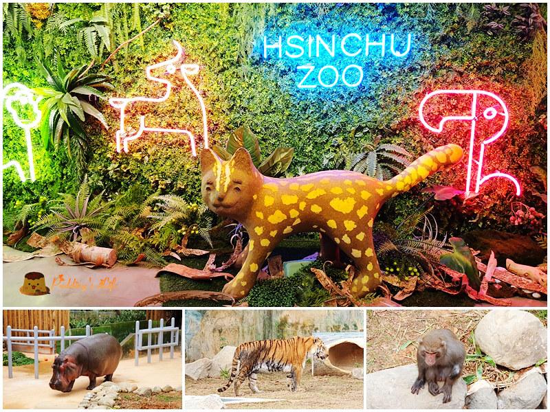 新竹親子景點│新竹市立動物園》全台最古老動物園重新開幕嘍